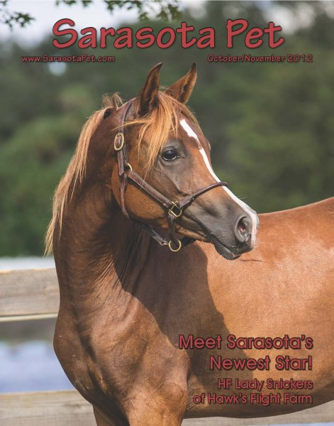 3-sarasota-pet-cover-oct-nov-2012-jpg