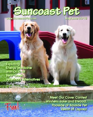 May-June 2016 Issue Cover
