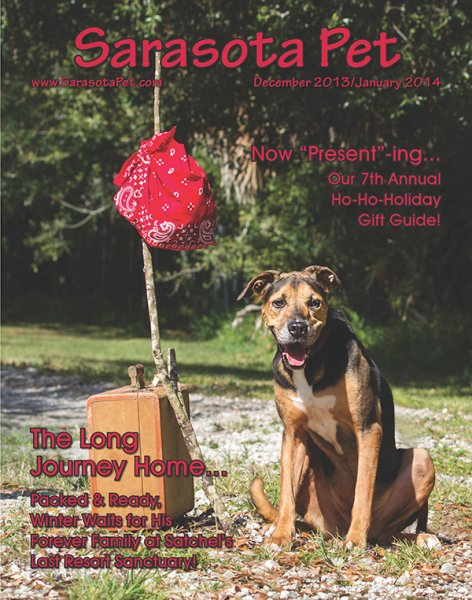 sarasota-pet-cover-december-2013-january-2014-for-facebook