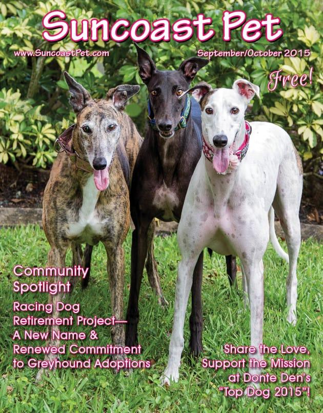 September/October 2015 Issue